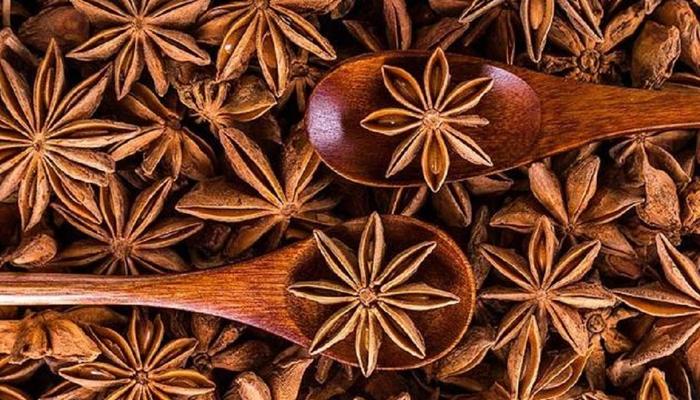 بادیان کے پھول کے حیرت انگیز فوائد
