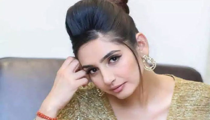 بھارتی سپریم کورٹ نے اداکارہ راگنی دیویدی کی ضمانت منظور کرلی