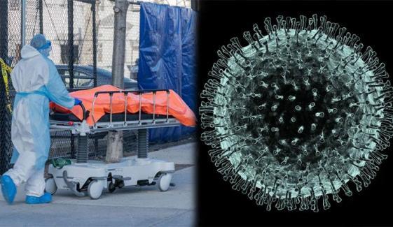 دنیا میں کورونا وائرس سے اموات 21 لاکھ 30 ہزار سے متجاوز