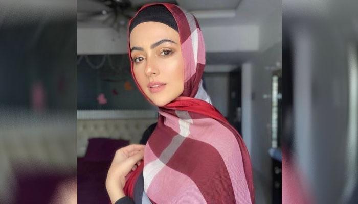 کچھ لوگ میرے خلاف ویڈیوز بناکر میرے ماضی کو ٓاُجاگر کررہے ہیں: ثناء خان