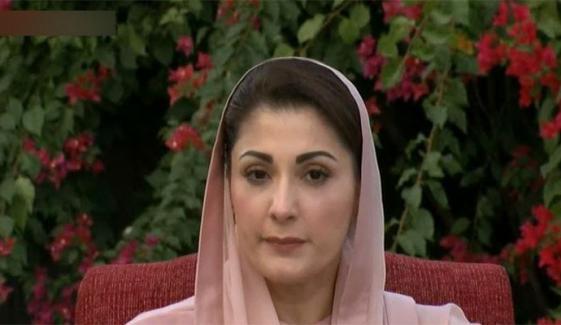 اراکین اسمبلی بھاگ رہے ہیں، اسی لیے عمران خان کو ہارس ٹریڈنگ یاد آگئی، مریم نواز