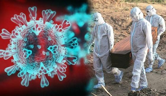 کورونا وائرس سے اموات میں کمی، مزید 31 جاں بحق