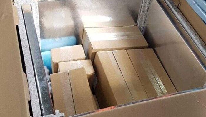 دو ہزار خوراک روسی کورونا ویکسین کی پہلی کھیپ غزہ پہنچ گئی، عرب میڈیا