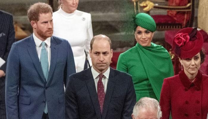 ہیری اور میگھن نے شاہی خاندان سے علیحدگی کا حتمی اعلان کردیا