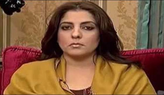 پولیس نے پلوشہ خان کے گھر پر حملے کی رپورٹ پیش کردی