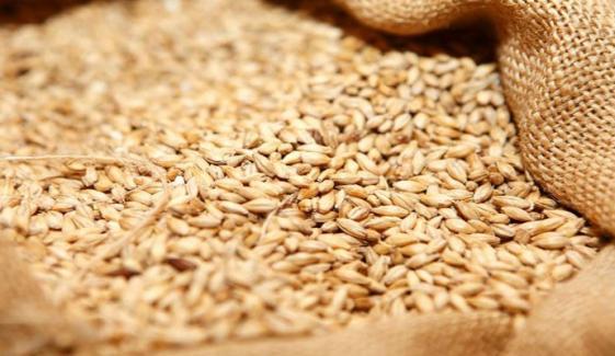 3 لاکھ ٹن گندم کی درآمد کیلئے مہنگی بولیاں موصول
