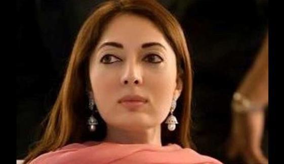 شرمیلا فاروقی کی گاڑی سے متعلق دلچسپ شاعری