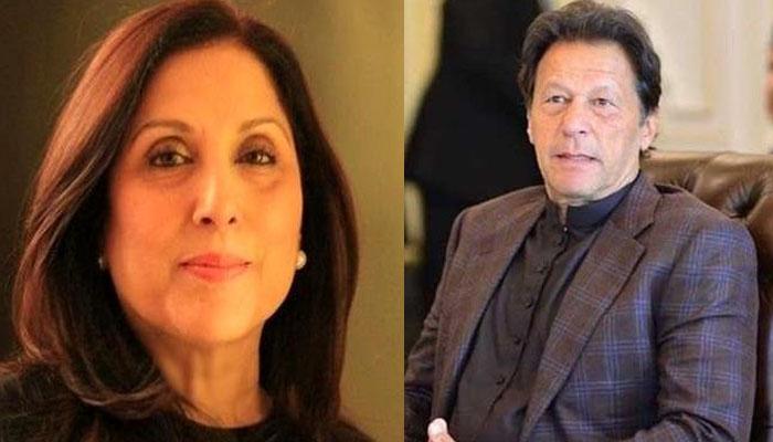 اعتماد ووٹ: ثمینہ پیرزادہ بھی عمران خان کی فتح پر خوش ہیں؟