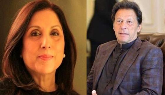 ثمینہ پیرزادہ بھی عمران خان کی کامیابی پر خوش ہیں؟