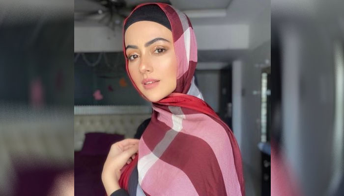 شوبز چھوڑنے کا فیصلہ آسان نہیں تھا: ثناء خان
