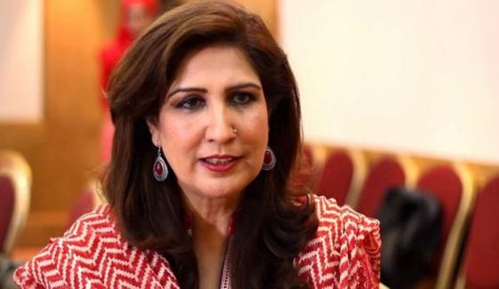 پی ڈی ایم سینیٹ اور ضمنی الیکشن کیلئے تیار نہیں تھی: شہلا رضا