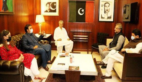 بلاول بھٹو نے حمایت سے متعلق مشاورت کے بعد جواب دینے کا کہا تھا، مفتاح اسماعیل