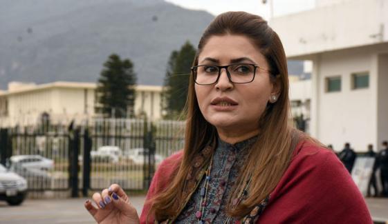 نون لیگ کی نائب صدر کا لہجہ افسوسناک تھا، شازیہ مری