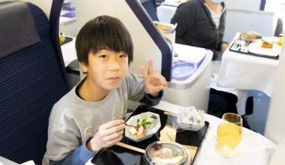 جاپانی ایئر لائن کے گراؤنڈ طیارے میں ڈائننگ کی پیشکش