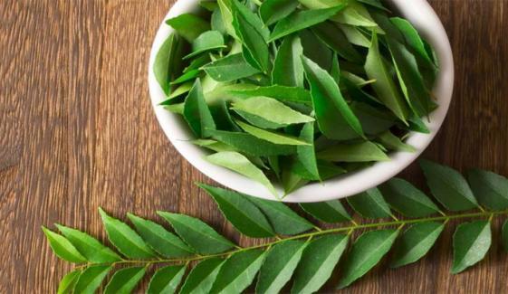 کڑی پتے کے صحت اور خوبصورتی پر حیرت انگیز فوائد