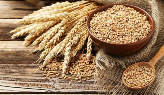 گندم کی خریداری مہم کا 10 اپریل سے آغاز کا اعلان