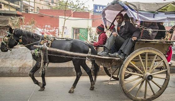 70 سالہ بابا رشید گھوڑے پر ووٹ کاسٹ کرنے پہنچے