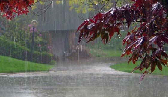 جہلم اور سرگودھا میں موسلادھار بارش