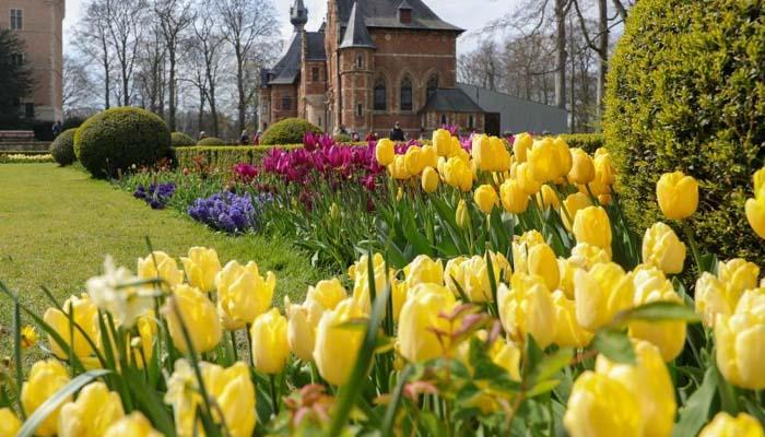 بیلجئم میں بین الاقوامی پھولوں کی نمائش