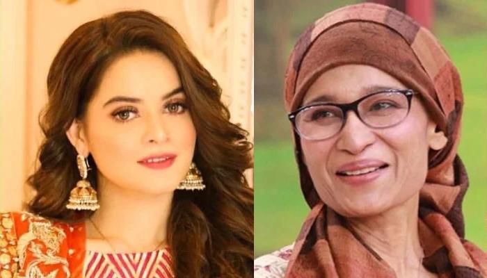 منال خان نے نائلہ جعفری کی آواز سے آواز ملالی