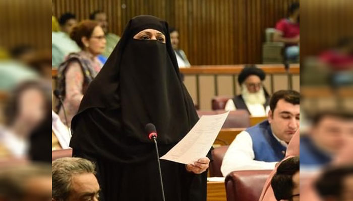 حکومت نے پارلیمان کو جاگیر بنالیا ہے، شاہدہ اختر علی