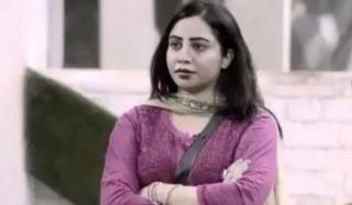 بھارتی اداکارہ عرشی خان کورونا وائرس میں مبتلا