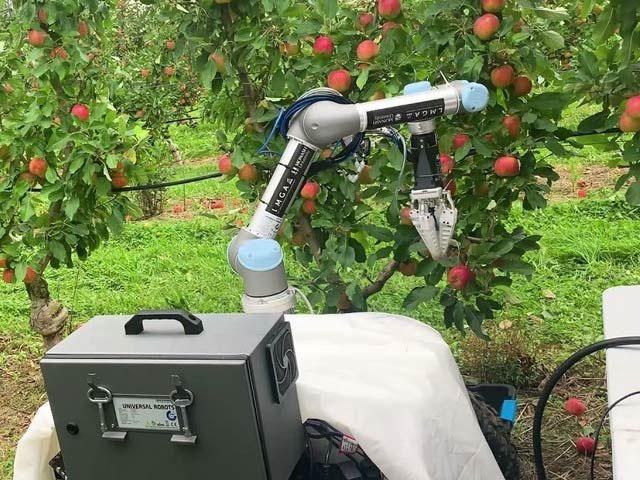 آپ نے ہر سات سیکنڈ میں درخت سے سیب اتارنے والا روبوٹ دیکھا ہے؟