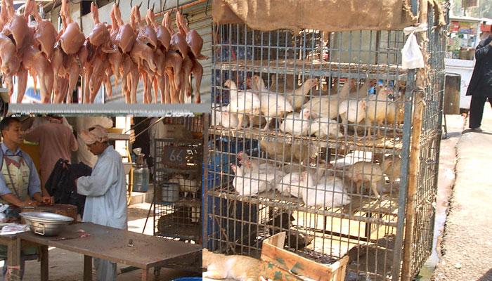 کوئٹہ میں مرغی کا گوشت 480 روپے کلو ہوگیا