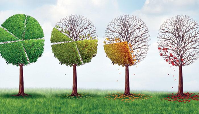 ماحولیاتی تبدیلی کیخلاف کاروباری ادارے کیا کرسکتے ہیں؟