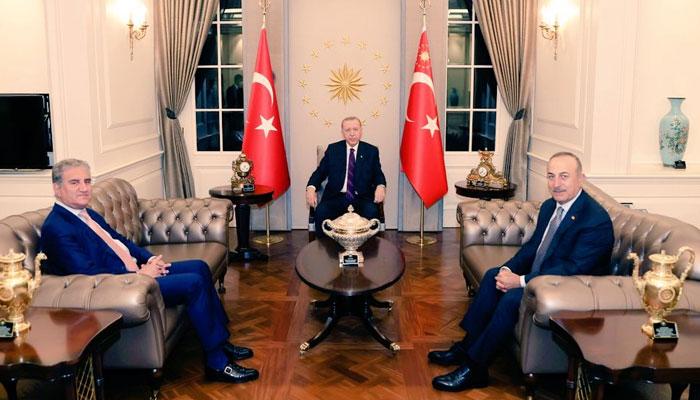 وزیرخارجہ شاہ محمودقریشی کی ترک صدر سےملاقات