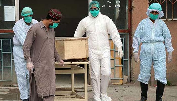 پاکستان میں کورونا سے مزید 47 اموات