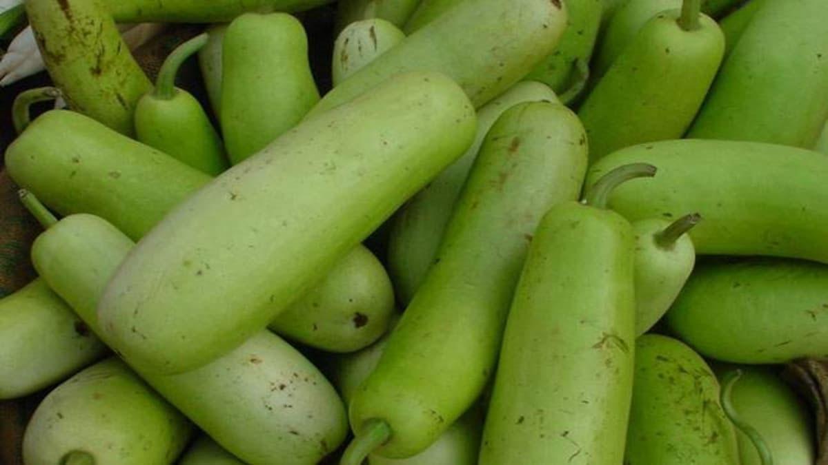 لوکی موسم گرما کی خاص سبزی کیوں؟
