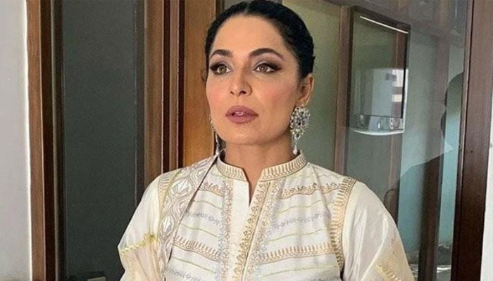 تکذیب نکاح کیس، اداکارہ میرا کی نئے شواہد جمع کرانے کی درخواست
