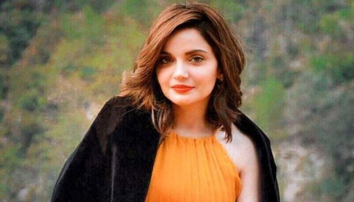 عورتوں کو ہراساں کرنا عالمی مسئلہ ہے: ارمینا خان