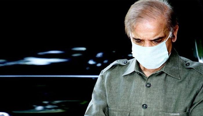 شہباز شریف نے ضمانتی مچلکوں پر دستخط کر دیئے