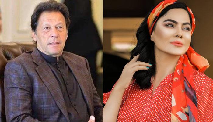 عمران خان پر تنقید کرنیوالے لوگ جاہل ہیں: وینا ملک