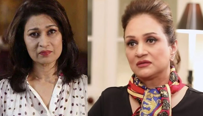 Bushra Ansari expresses grief over the death of Naila Jafari