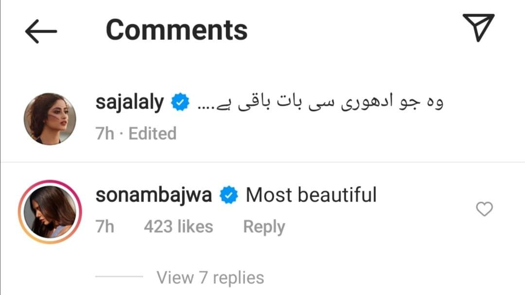 Indian actress Sajjal Ali's beauty lover