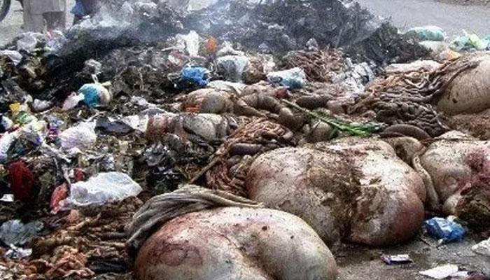 پشاور میں عید الاضحیٰ صفائی آپریشن شروع