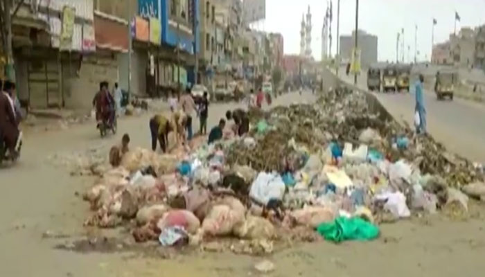 لاہور: قربانی کا دوسرا روز، آلائشوں سے تعفن اٹھنے لگا