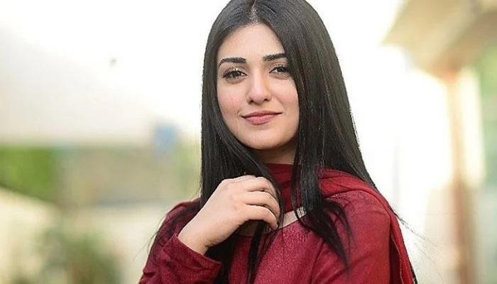 اپنے کیرئیر کے دوسرے ڈرامے میں ڈائریکٹر کو تھپڑ مارا تھا: سارہ خان کا انکشاف