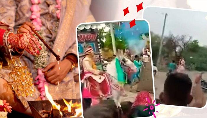 بھارت، گھوڑے کی دولہے کو لے کر فرار ہوتے ویڈیو وائرل