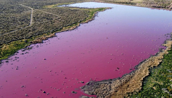 ارجنٹائن: جھیل کا رنگ اچانک گلابی ہوگیا