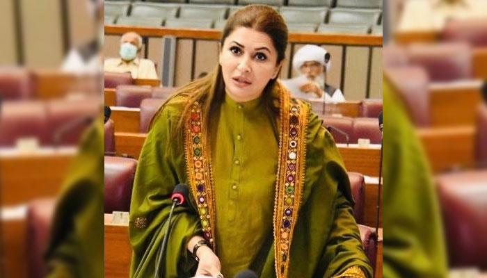بدقسمتی سے ملک پر نالائقوں کی حکومت مسلط ہے، شازیہ مری