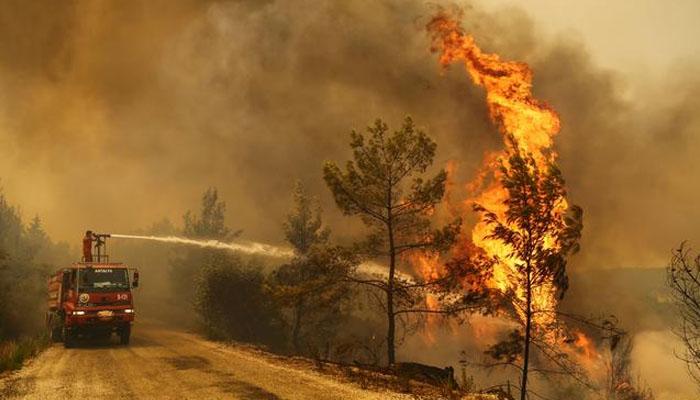 ترک صدر کاجنگلاتی آگ پر قابو پانے میں مدد کرنے والے ممالک کا شکریہ