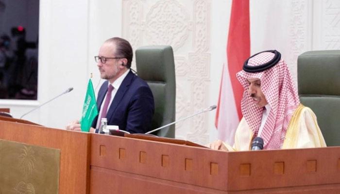 دہشت گردی کیخلاف جنگ میں آسٹریا اور عالمی برادری کیساتھ ہیں، سعودی عرب