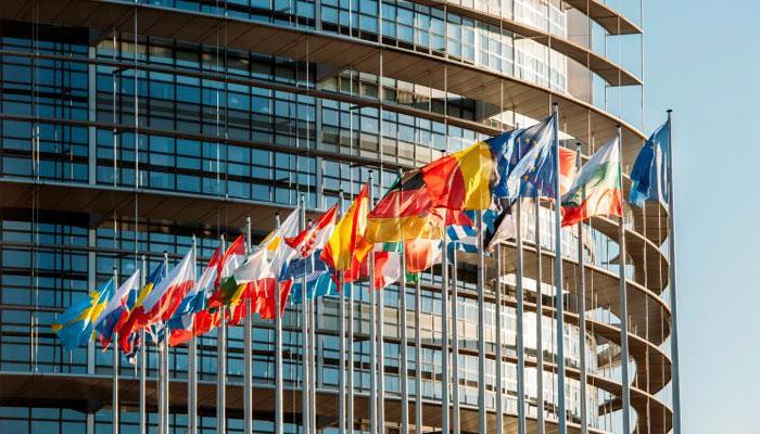 گھریلو تشدد سے خواتین کی ہلاکت، یورپی پارلیمنٹ کا معاملے کو یورو کرائمز فہرست میں شامل کرنے کا مطالبہ