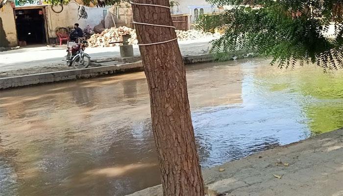 صادق آباد کی نہر سے 2 بچوں کی لاشیں برآمد