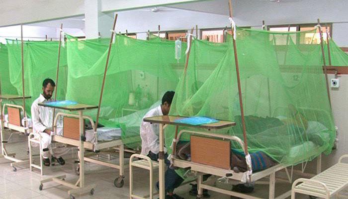 پنجاب میں ڈینگی کے 17 نئے مریض رپورٹ