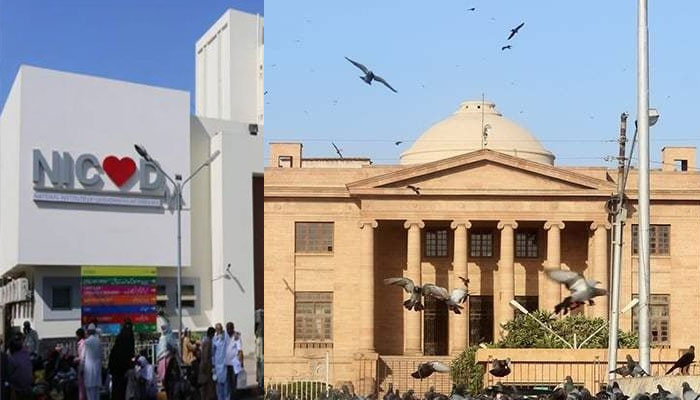 If government hospitals were capable, private hospitals would not open, Sindh High Court said